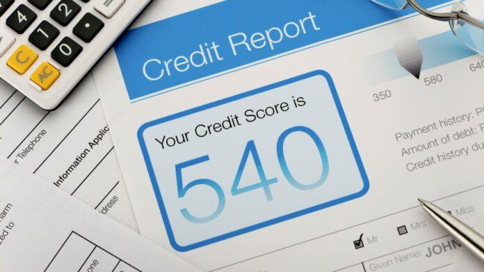 white label credit reports